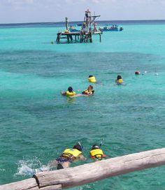 Visitors snorkeling in Garrafon Natural Reef Park. Photo © Teresa Plowright. - Photo © Teresa Plowright.