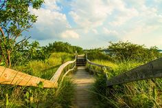 \'Upstairs, Downstairs\'  The dunes at New Buffalo, Michigan
