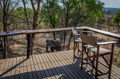 Accommodation review of this stunning lodge in Victoria Falls Victoria Falls, Travel Companies, Zimbabwe, The Good Place, Places, Lugares, Victoria
