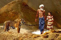 """""""El hombre del tigre"""" - (1200 x 800 px) - Luis Pulo - Enero 9, 2013 - Fotomontaje - Licencia Creative Commons"""