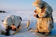 「Fish trap russia」の画像検索結果