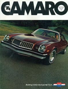 1974 Chevrolet Camaro Sport Coupe - this looks like the one I had.  Stupid not to keep it!