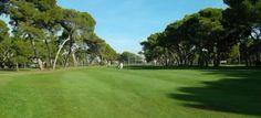 El Club de Golf Costa de Azahar, cuenta con un campo de nueve hoyos rodeado de pinos y situado a 50 metros de la playa del Grao de Castellón.  Para más información visita nuestro blog: http://blog.hoteldelgolfplaya.com/club-de-golf-costa-de-azahar/ #GraoCastellon
