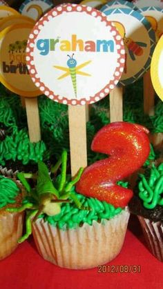 Graham's 2nd bug themed birthday party!!