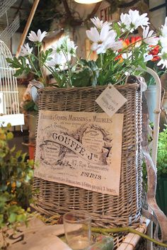 French Decorating Ideas On Pinterest French Country