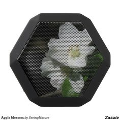 Shop Apple blossom black bluetooth speaker created by SeeingNature. Music Speakers, Bluetooth Speakers, Apple Tree, Delicate, Flowers, Gifts, Black Friday, Electronics, Presents