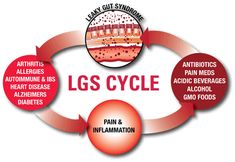 Leaky Gut Cycle - colostrum