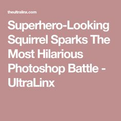 Superhero Squirrels Superheroes Pinterest Superheroes And - Squirrel photographed in heroic pose becomes star of hilarious photoshop battle