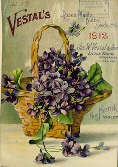 Front cover illustration of a basket of Gov Herrick Violets from Jos W. Little Rock, Arkansas. Department of Agriculture, National Agricultural Library Biodiversity Heritage Library. Art Vintage, Vintage Poster, Decoupage Vintage, Vintage Ephemera, Vintage Postcards, Vintage Labels, Vintage Images, Planting Roses, Planting Bulbs