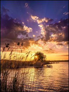 Река Бичевая балка:Место человека в мире природы
