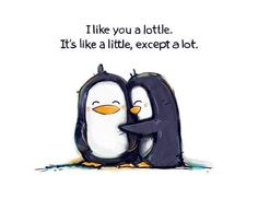 I Like you a Lottle... My parents on trek always used this. Cutest parents ever!!!