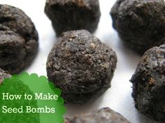 How to Make Seed Bombs.  It's an easy #DIY #gardening project that everyone can do!
