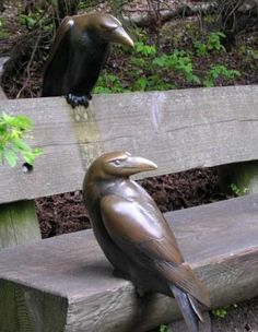 Crows Sculpture waiting to share a seat with you at the Seattle Woodland Park Zoo!!!  :)