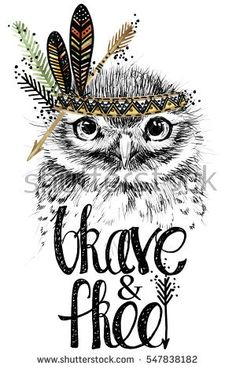 owl. forest bird illustration. brave and free.