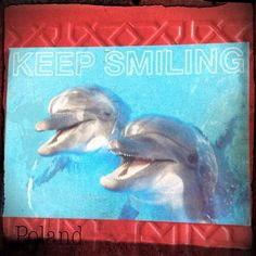 2013-07-12 #Postcard from #Poland (PL-728353) via #postcrossing #dolphin #smiling #Padgram
