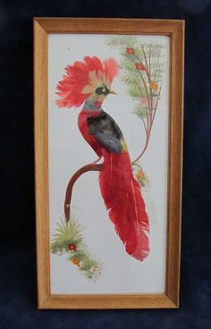 Vintage Framed Mexican Feather Art - Peacock