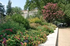 Smithsonian Gardens' Butterfly Habitat Garden outside the National Museum of Natural History - check out a list of pollinator-attracting plants on our blog.