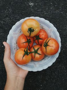 Grabbing a pack of tomatoes (Solanum lycopersicum) after in a rush