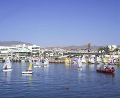 "7. Eilat, Israel TripAdvisor says: ""Charming Eilat is one of Israel's most popular resort cities. Nestled at the Northern tip of the Red Sea, Eilat's warm, clear waters are a huge draw for divers, while the reefs of Coral Beach Nature Reserve are perfect for snorkelers."""