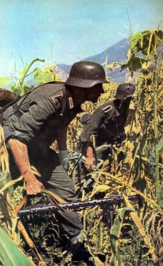 World War II in Color: German Infantry Advance Through a Russian Cornfields