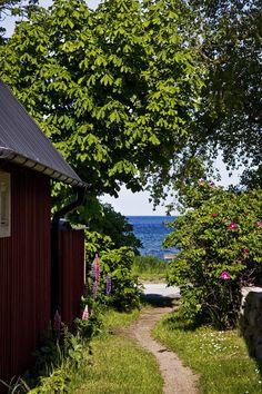 En underbar svensk sommar bild! Grönska, blommor och vatten! En bild från gårdagens sen eftermiddags promenad! Första juni i mitt Paradis! Det blåste lite krabbvind på havet. Tur det att den svalka…