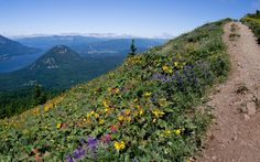 Dog Mountain, Columbia River Gorge, WA - Best Views in America | Travel + Leisure