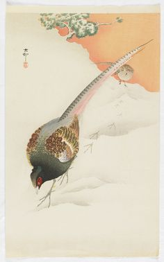 Pheasants on the snow, by Ohara Koson (Japanese), 1920-1930