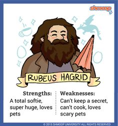 Rubeus Hagrid - Hagrid is the groundskeeper at Hogwarts, but, man, he's so much more than that. He's pretty much the friendliest, most trustworthy, and most loving authority figure at Hogwarts. He previously attended Hogwarts and was expelled during his third year.