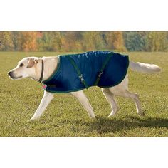 Dover Saddlery Rider?s International Fleece-Lined Dog Blanket