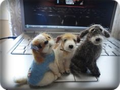 "My felted dogs. To put in my store ""Feltro em Casa""."