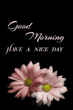 Good Morning Greetings, Good Morning Quotes, Lord Shiva Hd Images, Good Day, Night, Life, Hapy Day, Buen Dia, Good Morning