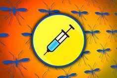 Vacuna contra el zika: científicos programan nanopartículas de ARN que podrían protegernos de este virus