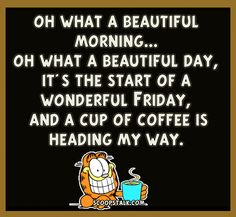 Its The Start Of A Wonderful Friday garfield friday happy friday tgif good morning friday quotes good morning quotes friday quote good morning friday funny friday quotes quotes about friday garfield quotes