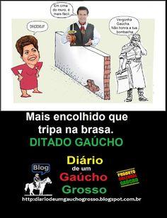"""Diário de um Gaúcho Grosso: EM """"HOMENAGEM"""" AO DEPUTADO """"GAÚCHO"""" POMPEO DE MATT..."""