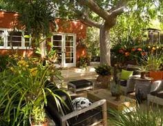 Joseph Merek Santa Monica, Southern California gardening, California garden, California plant and flower, planting garden, California landscape, patio gardens, garden design, Cindy McNatt