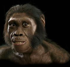 Nossos ancestrais não eram feios.