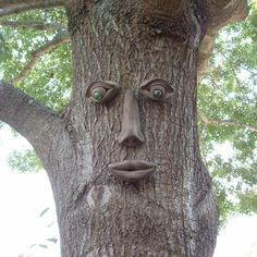 TREE FACE ~ Handmade in the USA of durable all-weather cement, this striking tree face blends nicely into your tree while his iridescent eyes catch the sunlight. A guaranteed hit with any gardener. (Home Depot)