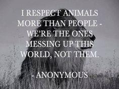 True vet quote