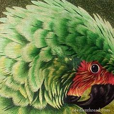 This is hand embroidery, and this parrot is made of thread. The technique is called Needlepainting. Color me super impressed.