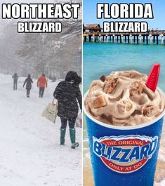 Brrr these Blizzards make my teeth cold Florida Man Meme, Florida Quotes, Florida Funny, Florida Girl, Florida Living, Florida Humor, Funny Images, Funny Pictures, Funny Pics