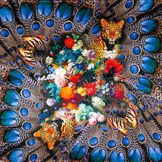 100% Foulard en soie Femmes Écharpe Léopard Papillon Fleur Foulard En Soie  Bandana 2018 Top En Soie Petit Carré Écharpe De Luxe Dame Cadeau dans  Foulards de ... fcec28d703f