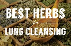 All day, every day, your respiratory system is constantly working and is the veh… - Health Remedies Natural Health Remedies, Natural Cures, Natural Healing, Natural Beauty, Lung Detox, Lung Cleanse, Alternative Heilmethoden, Alternative Health, Health And Nutrition