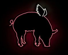 Loving the neon Art by Daniel A. Bruce,NYC and a good tie in with the Making it Possible/End Factory Farming campaign in Australia