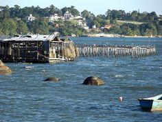 Fazenda de mariscos na frente da pracinha