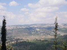 VIEW FROM YAD VASHEM. After boarding the wrong train back we went on a food tour with Bite Mojo.
