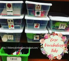 A few weeks ago I got a few questions about what I store in my core vocabulary tubs. I have been meaning to work on this post since then, bu...