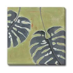 Palm Study Outdoor Wall Art