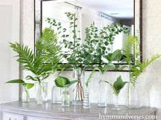 green leaves in glass vases - centerpieces -Using Shade Loving Perennials in Your Decor - Hymns and Verses Bring some shade perennials indoors and make an arrangement with a variety of glass vases or containers to brighten up any space in your home. Tall Vases, Bud Vases, Flower Vases, Large Vases, White Vases, Decoration Table, Vases Decor, Plant Decor, Green Centerpieces