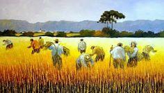 A minha esperança é Jesus!: A colheita é certa!