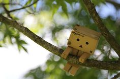 over your head by taisukekato, via Flickr
